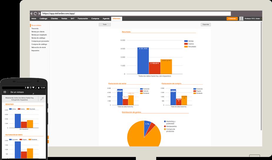Informe de gestión online